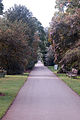 Holly Walk, Kew Gardens (3998190400).jpg