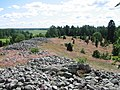 Hornåsen gravfält 3.jpg