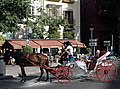 Horse-drawn carriage, Mallorca. (36540061454).jpg