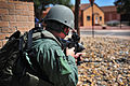 Hostile threat exercise 120620-F-YG475-140.jpg