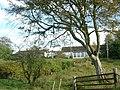 Houses at North Halls - geograph.org.uk - 66337.jpg