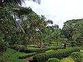 Hpa Yar Gyi Ward, Yangon, Myanmar (Burma) - panoramio (8).jpg