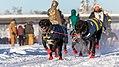 Hugh Neff Dogsled, Alaska (39884646254).jpg