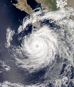 飓风奥蒂斯 (2005年)