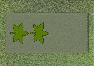 IDF-Patch-3.png