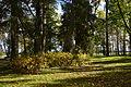 Illuka manor park 03.JPG
