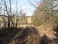 Imbrado sen., Lithuania - panoramio (81).jpg