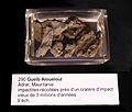 Impactites d'Aouelloul-Musée de minéralogie de Strasbourg (2).jpg
