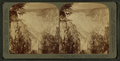 Incredible heights and depths of the canyon N. E. from Artists' Point, Yellowstone Park, U.S.A, by Underwood & Underwood 3.png