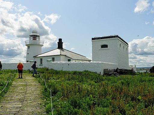 Inner Farne Lighthouse (48397913441)