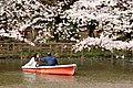 Inokashira Park 2009-04-05 (3446856512).jpg