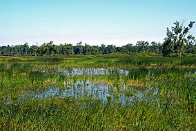 Iroquois National Wildlife Refuge, New York. Credit- USFWS (11738370896).jpg