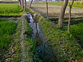 Irriegation System (Sohail Aziz 0323-2600009) - panoramio.jpg