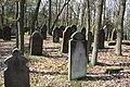 Jüdischer Friedhof Hoyernhagen 20090413 059.JPG