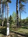 J. Būtėnas, Kazlų Rūdos miškas.JPG