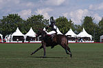 Jaeger-LeCoultre Polo Masters 2013 - 31082013 - Match Legacy vs Jaeger-LeCoultre Veytay for the third place 15.jpg