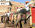 Jaipur, India (366886331).jpg