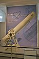 James Nasmyth's telescope.jpg