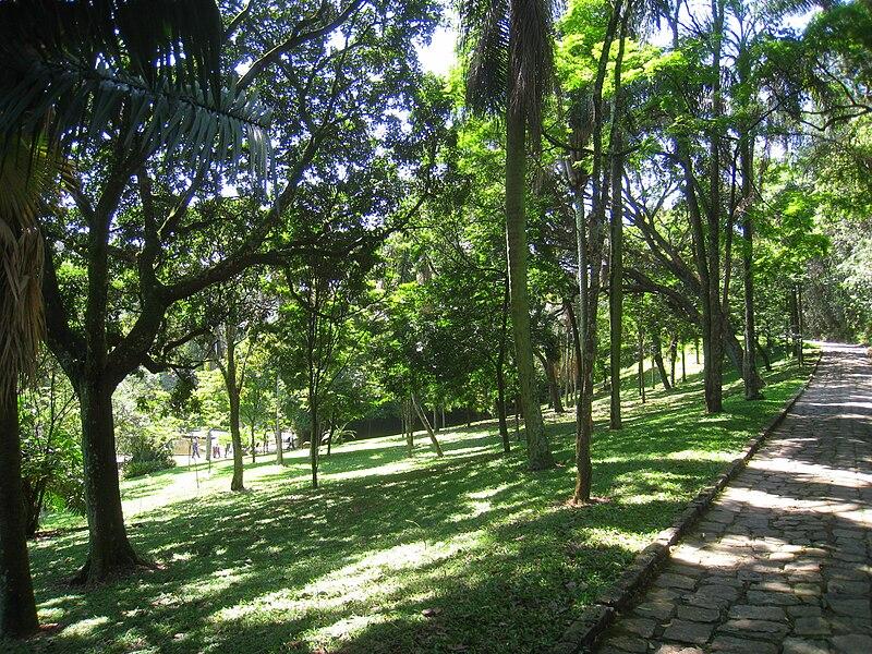 File:Jardim Botânico de São Paulo - general view IMG 0160.jpg