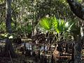 Jean Lafitte Preserve (10-2011) - panoramio.jpg