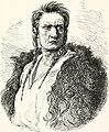 Joseph, the Nez Percé warrior.jpg