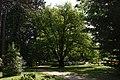 Kámoni Arborétum Szombathely Kamon Arboretum Park 04.jpg