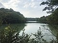 Kamataike Pond in Kasuya Research Forest of Kyushu University 3.jpg
