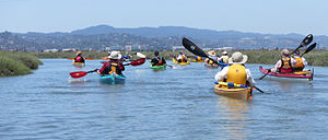 San Francisco Bay Area Water Trail - Kayakers in Redwood City, California