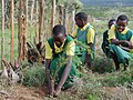 Kenyan girls plant trees (6310445412).jpg