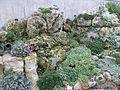Kew Gardens 0428.JPG