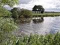 King's Sedgemoor Drain - geograph.org.uk - 492128.jpg