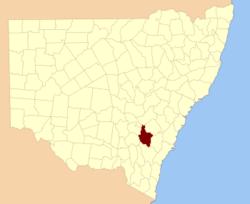 King NSW