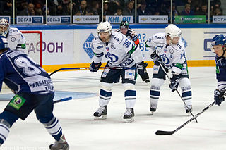 Filip Novák Czech ice hockey player