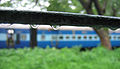 Konkan Railway - views from train on a Monsoon Season (18).JPG