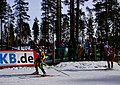 Kontiolahti Biathlon World Cup 2014 45.jpg