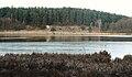 Kuchowiec lake, Notecka Forest.jpg