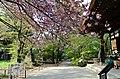 Kuhonbutsu Temple - panoramio (2).jpg