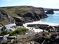 Kynance Cove from the West Cliffs - geograph.org.uk - 745901.jpg