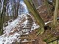 Lépcsők az Apátkúti-völgyben, Visegrád, Hungary - panoramio (26).jpg