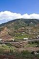La Gomera 9 (8548216677).jpg
