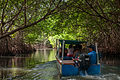 La Restinga Lagoon National Park 4.jpg