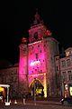 La Tour de la Grosse Horloge illuminée, Noël 2009 (11).JPG