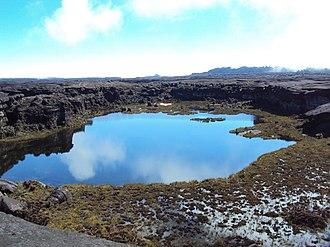 Cuyuni-Mazaruni - Image: Lago Gladys, no platô do Monte Roraima