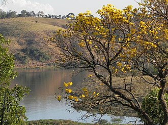 Varginha - Image: Lago de furnas Varginha