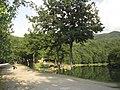 Lago dei Pontini (6).jpg