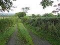Lane, Carnkenny - geograph.org.uk - 1478633.jpg
