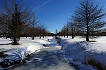 Langley winter wonderland 140131-F-IT851-024.jpg