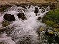 Lar river,Doberar spring, Source دشت لار- چشمه دوبرار شمالی-منشاءرودلار - panoramio.jpg