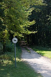 Laxenburg Schlosspark 2016-08-28 02 Reitweg.jpg