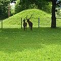 Leubas, 87437 Kempten (Allgäu), Germany - panoramio (4).jpg